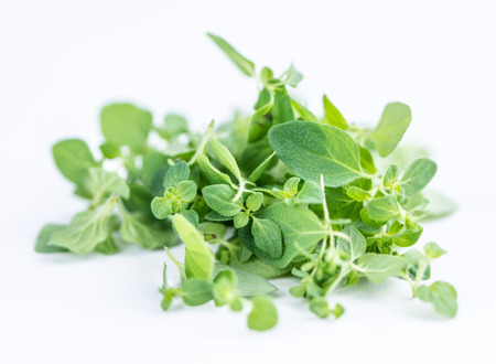 Fresh Oregano (selective focus; close-up shot) on white background Stock Photo