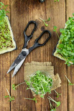 berro: Fresh cutted Cress as high detailed close-up shot on a vintage wooden table (selective focus) Foto de archivo