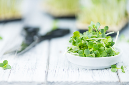 Portion of fresh Cutted Cress (close-up shot; selective focus)