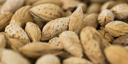 Roasted Almonds (in shell) as full size background image (selective focus)