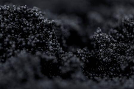 Portion of Black Caviar as detailed close-up shot; selective focus Banque d'images