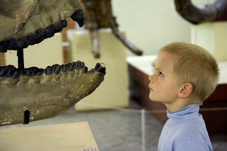 mus�e: Petit gar�on � la recherche en ancien squelette mus�e de pal�ontologie