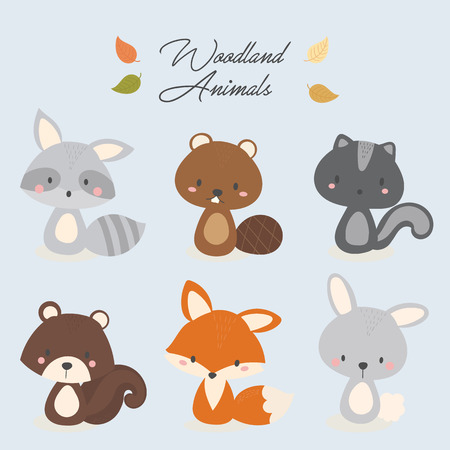 Set of cute woodland animal. Raccoon, beaver, skunk, squirrel, fox, rabbit. 向量圖像