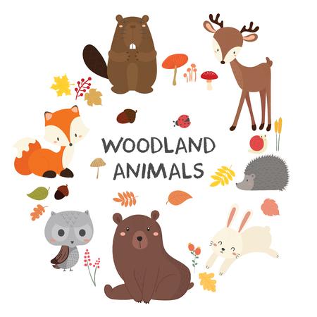 Set of cute illustration of woodland animals