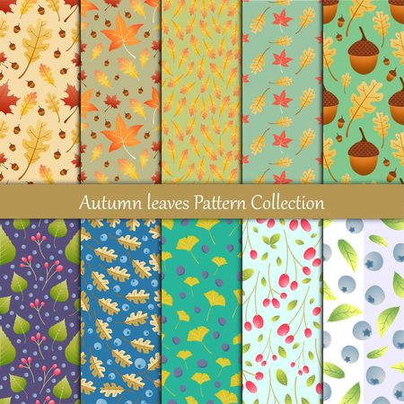 Autumn leaves and wild berry seamless pattern collection