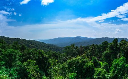 Panorama landscape background of rain forest mountain and blue sky and cloud