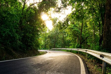 Nature landscape of empty s-curve road in the green rain forest with sun light background