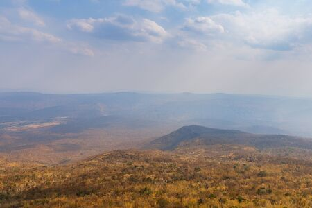 Mixed forest in summer season landscape view from top mountain nature background