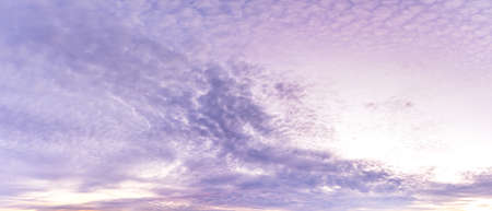 Panorama nature background purple cloudy morning sky