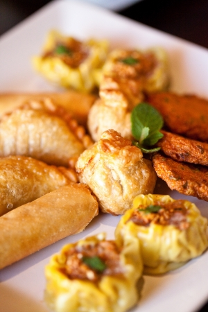 Thai entrees on a plate, spring rolls, curry puff, money bags, fish cake, dim sim  photo