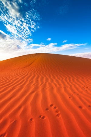 untamed: Red outback ripple sand dune desert with blue sky.