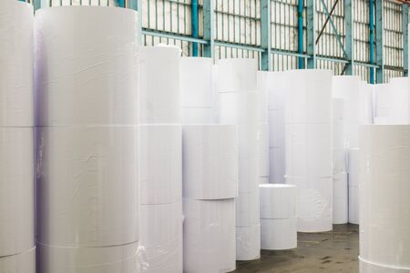 View of huge rolls of paper in a printing plant, recycling of waste paper. Zdjęcie Seryjne