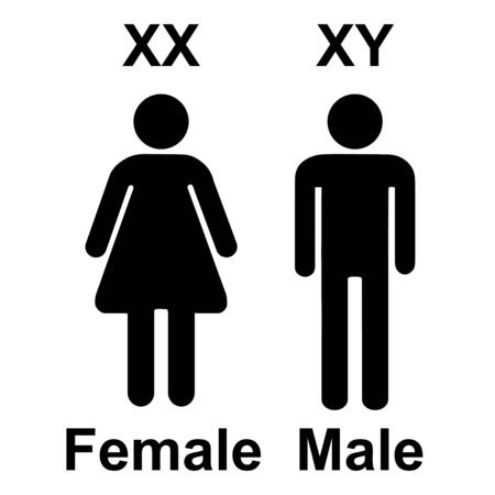 Chromosome X Y Sex Determination , XX female, and XY males Vector Sign Illustration