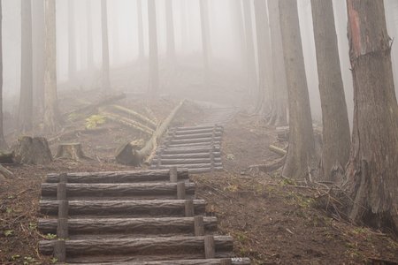Mountain road in fog
