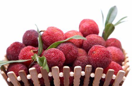 ericaceae: fresh berries