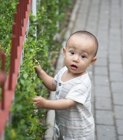 asian baby Stock Photo - 5127709