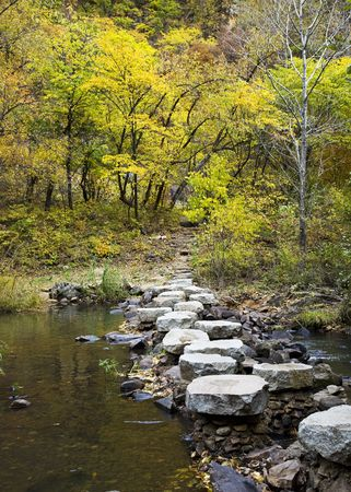 stone steps crossing stream to forest.  photo