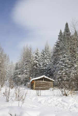 log cabin in snow: log cabin in winter forest  Stock Photo