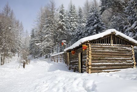 log cabin in winter day  photo