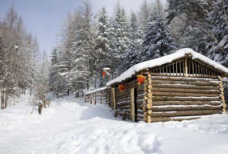 log cabin in winter day  photo
