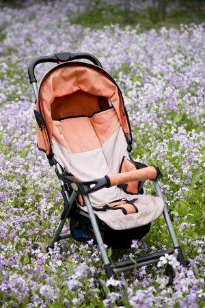 Baby Stroller in wildflower field photo
