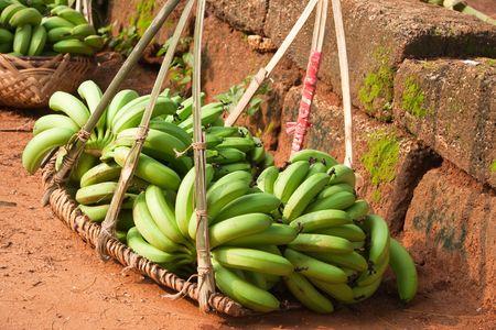 unripe: unripe bananas in basket