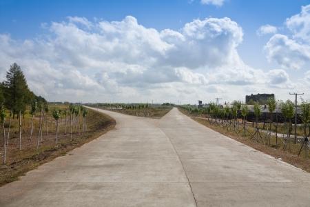 divides: Bifurcaci�n en el camino