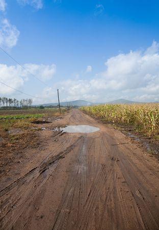 Dirt road after rain Stock Photo - 7598757