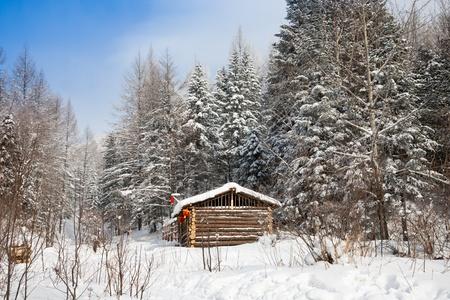 log cabin winter: Cabin in winter forest