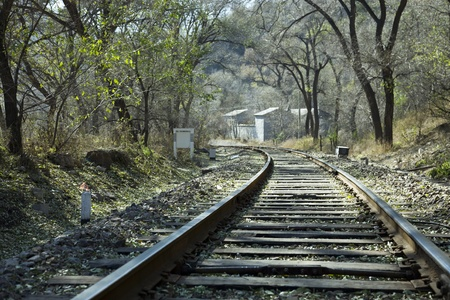 rail cross: Railroad track