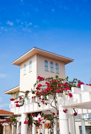 Exotic apartment. Bougainvillea climbing around the building.Palma Dorada Inn Hotel Sanya, Hainan Island, China
