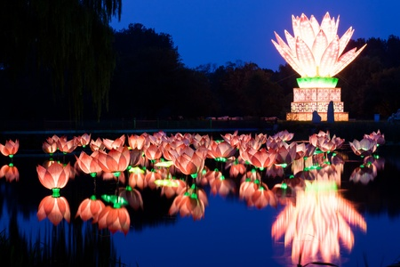 Pink lotus lantern floating on a pond photo