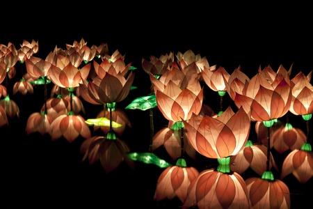 lotus lantern: Pink lotus lantern floating on water Stock Photo