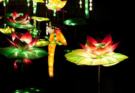 lotus lanterns photo