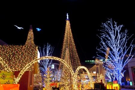 Christmas lighting ornament at night