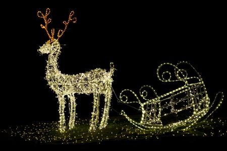 Shining christmas reindeer at night Standard-Bild