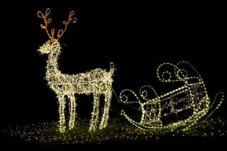 Shining christmas reindeer at night 免版税图像