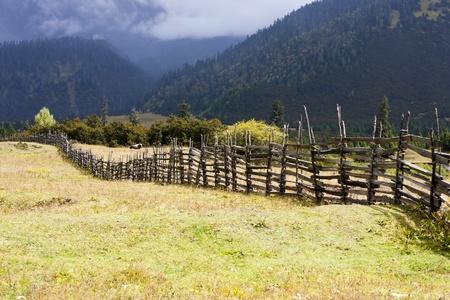 Rural landscape of autumn meadow