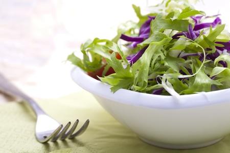 endivia: Ensalada de hojas de lechuga fresca