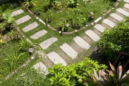 Stone paved footpath through garden  Stock Photo - 14996885