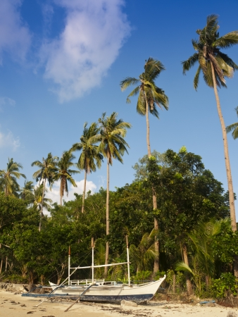wilderness area: Tropical beach landscape, El Nido, Philippines