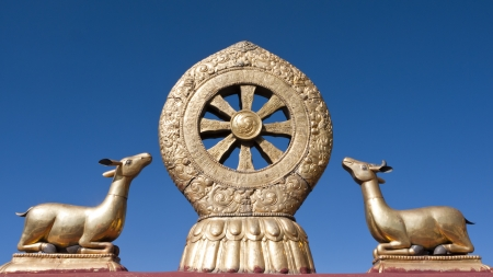 asia deer: Golden Dharma Wheel, Jokhang Temple, Lhasa, Tibet