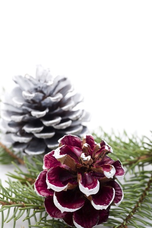 Christmas ornament - pinecones Stock Photo - 16565563