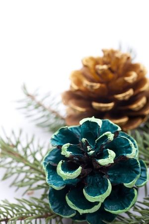 colorful pine cones photo