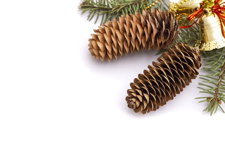 Christmas Pine cone border Stock Photo - 16566955