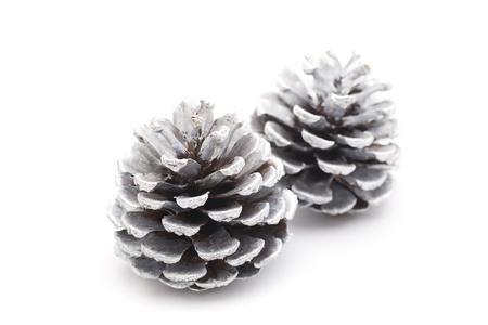christian festival: silver pine cones Stock Photo