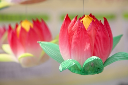 laterns: Paper lotus Laterns