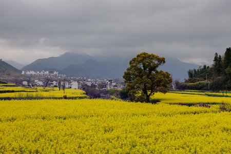 terraced: Beautiful Chinese rural landscape under cloudy sky Stock Photo