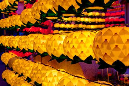 Colorful lotus lanterns at night