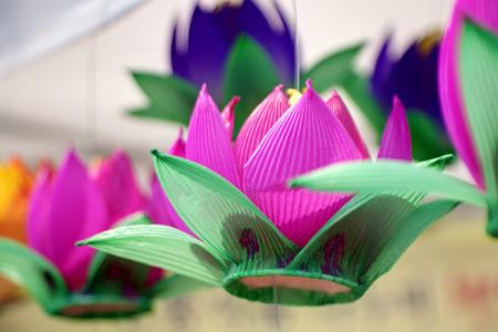 lotus lantern: Paper lantern at Lotus Lantern Festival.